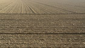 Plowed acre Stock Image