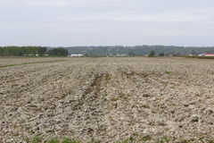 Plowed Acreage Stock Images