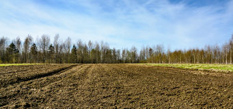 Plowed agricultural arable land. In spring ready for cultivation Stock Images