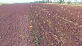 Plowed Agricultural Field At Daytime stock video