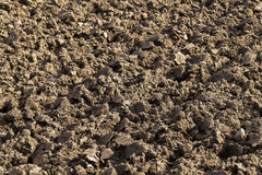 Plowed agricultural field. Photographed close-up of plowed agricultural field for planting a new crop Royalty Free Stock Photo