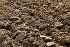 Plowed agricultural field. Photographed close-up of plowed agricultural field for planting a new crop Stock Images