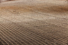 Plowed agricultural field. Agricultural field, ready for planting crops. Spring. close-up Royalty Free Stock Photos