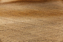 Plowed agricultural field. Agricultural field, ready for planting crops. Spring. close-up Royalty Free Stock Images