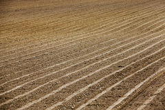 Plowed agricultural field. For sowing. Spring. Belarus Stock Photos