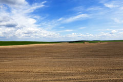 Plowed agricultural field. For sowing. Spring. Belarus Stock Images