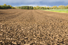 Plowed agricultural field surrounded by forest. Royalty Free Stock Image