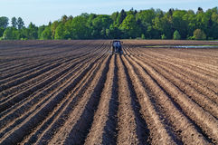 Plowed agricultural field. Stock Photography