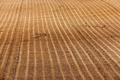 Plowed agricultural land. Plowed and ready for sowing agricultural fields. close-up Stock Photos