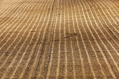 Plowed agricultural land Stock Image