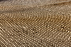 Plowed agricultural land. Plowed and ready for sowing agricultural fields. close-up Stock Image