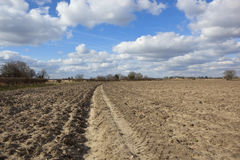 Plowed bare soil Royalty Free Stock Image