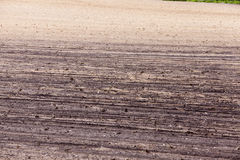 Plowed for crop land Stock Images