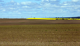 Plowed for crop land Stock Photography