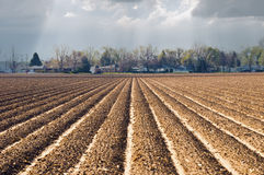 Plowed Earth Stock Photos