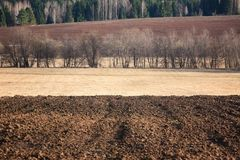 The plowed earth. Against the background of the wood Stock Photography