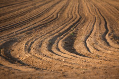 Plowed earth, the soil Royalty Free Stock Photo