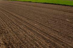 Plowed empty field Royalty Free Stock Photos