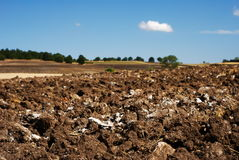 Plowed Farm Field. Plowed agricultural land ready for planting stock photos