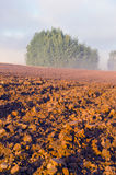 Plowed farm field and morning mist Royalty Free Stock Image