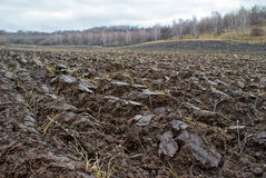 Plowed farm field stock image