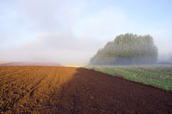 Plowed farm field and morning mist Royalty Free Stock Photos