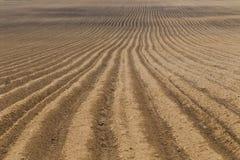 Plowed farm field Stock Photos
