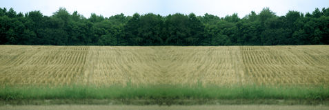 Plowed farm land. Details in the plowed rows laid out in farmer's field Royalty Free Stock Images