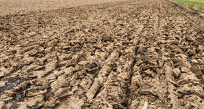 Plowed farmland after slurry injection ready for sowing Stock Image