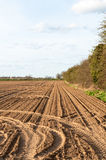 Plowed farmland under blue sky Royalty Free Stock Photography
