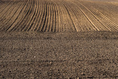 Free Plowed Field Stock Images - 13829054