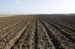 Plowed Field. A ploughed dirt field in the country stock photography