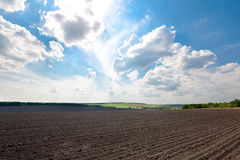 Free Plowed Field Royalty Free Stock Photography - 15156547
