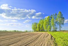 Plowed field. Russian rural landscape in may Royalty Free Stock Images