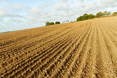 Plowed field. Royalty Free Stock Photography