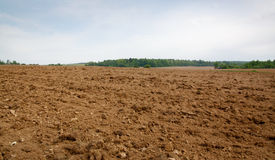 Plowed field Stock Images