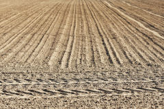 Plowed field Royalty Free Stock Photo