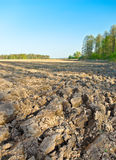 The plowed field Stock Images