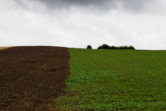 The plowed field Stock Photos