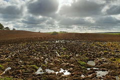 Plowed field. Stock Images