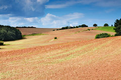 Free Plowed Field Stock Photography - 33581622