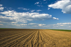 Plowed field. In the spring Stock Image
