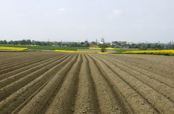Free Plowed Field Stock Images - 9717324