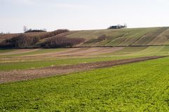 Plowed Field - Agriculture in Poland Royalty Free Stock Images