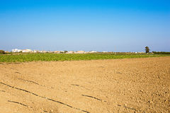 Plowed field. Arable landscape, cultivated field with bare red soil under a blue sky with drip irrigation system royalty free stock images