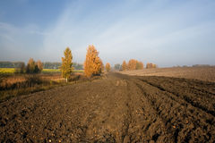 Plowed field in the autumn Stock Image