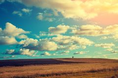 Arable field with cloudy sky. Plowed field in autumn after harvesting Royalty Free Stock Photos