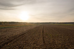 Plowed field. Autumn plowed field at sunset Stock Photo