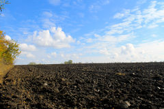 Plowed field on autumn Royalty Free Stock Photo