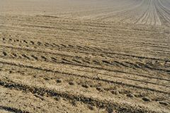 Plowed field background Stock Photos